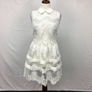 Endless Rose White Mesh Lace Embroidered Dress